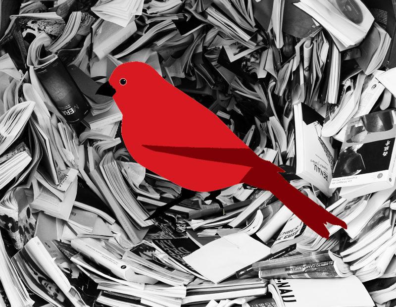 thrillerschrijfster marleen hartog manuscript schrijven beoordelen pijn boek